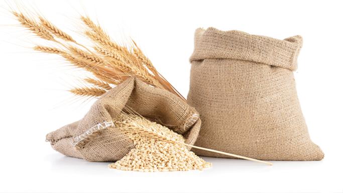 Auf diesem Bild sehen Sie zwei Säck, in denen sich Korn befindet.