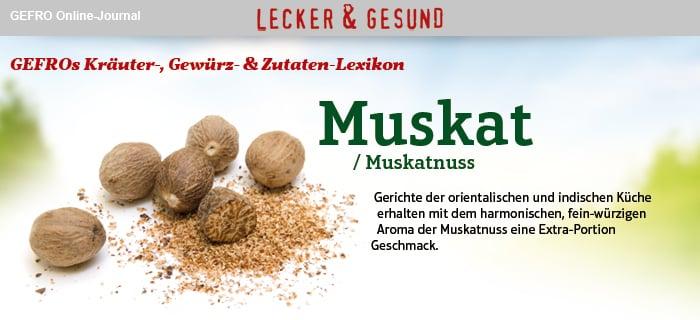 Muskat Muskatnuss Alle Infos Tipps Gefro
